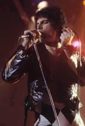 artist celebrity freddie mercury idol